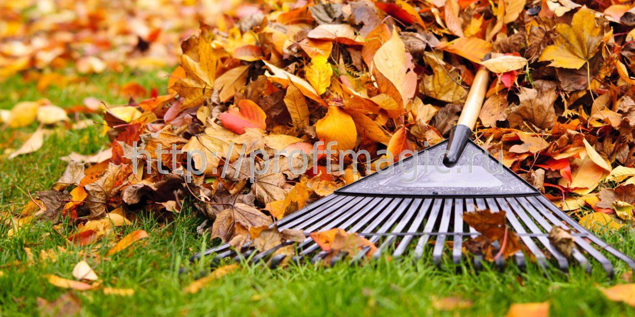 Особенности уборки дома осенью
